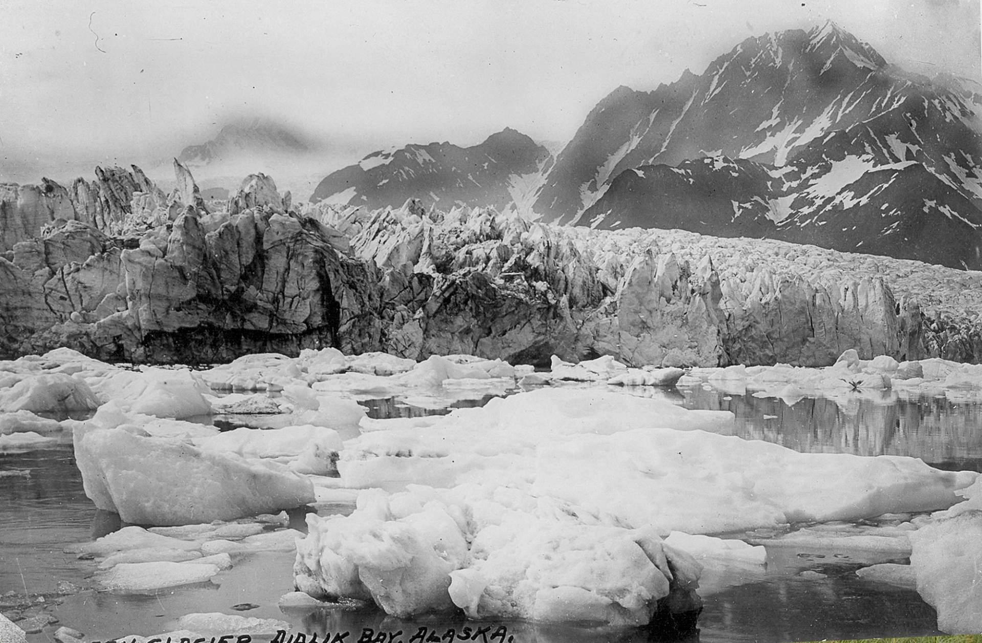 Bruce Molnia Glacier Photos Pedersen Glacier View2 1920s