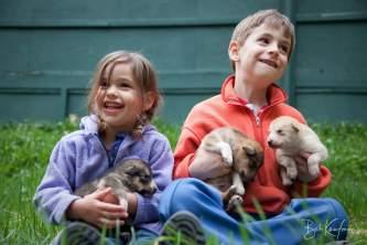 IMG 3195 kids holding dogs seaveys ididaride exit glacier road