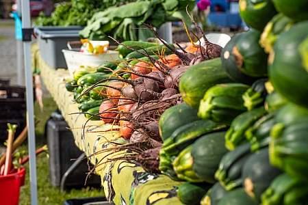 Wednesday Market Soldotna 27 alaska untitled