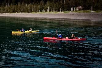 MG 5208 alaska sea kayaking tours