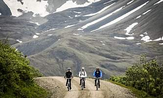 Alaska Bicycle Day Tours