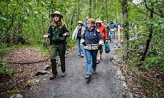 Alaska Park Tours
