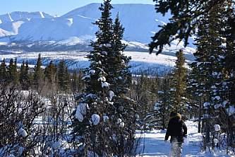 winter siteseeing tours