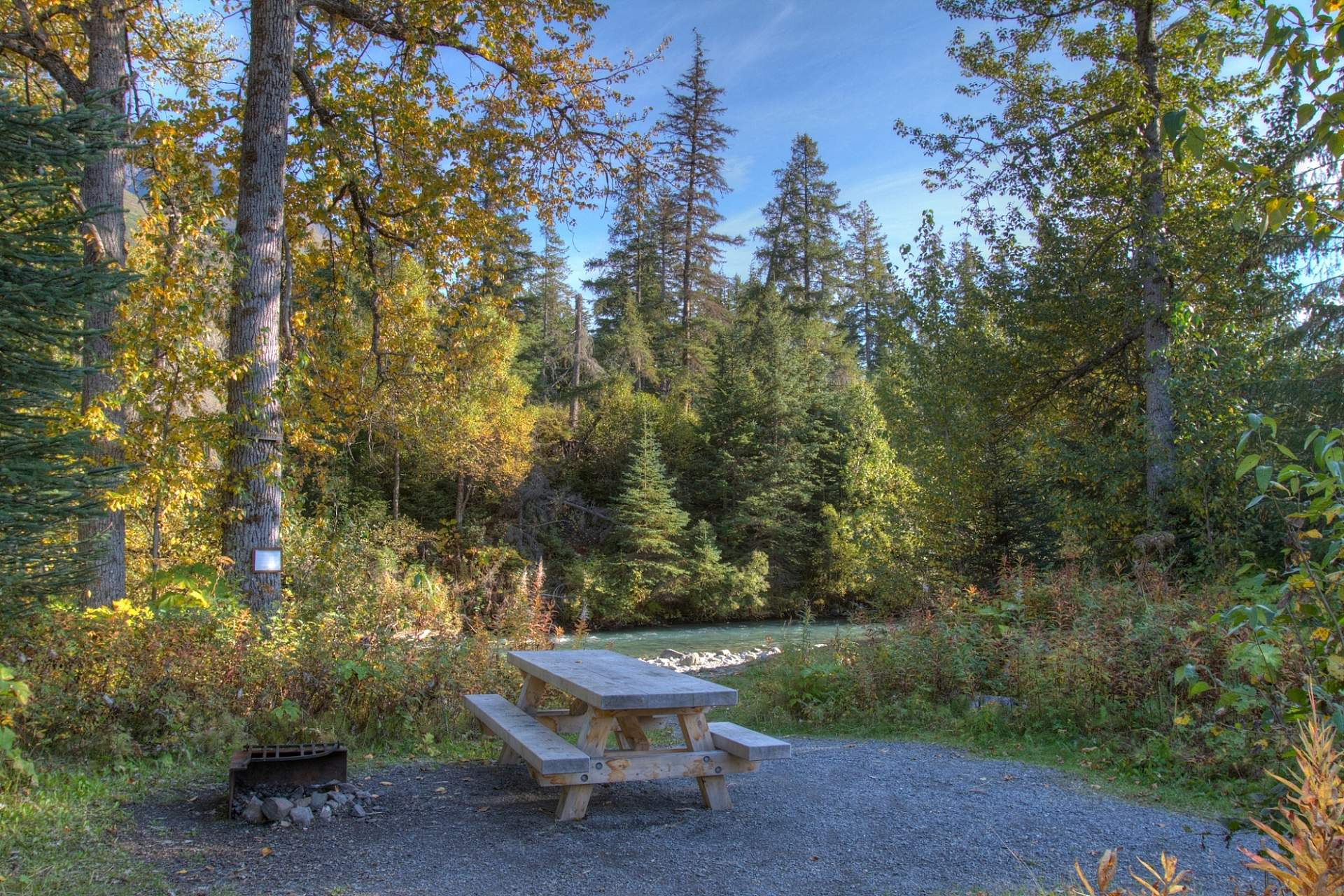 A picnic table in a forest setting at Ptarmigan Creek Campground