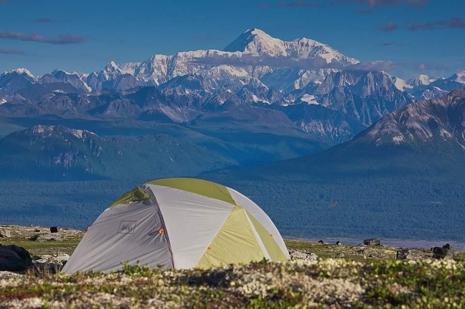 View of Denali from the Kesugi Ridge Trail