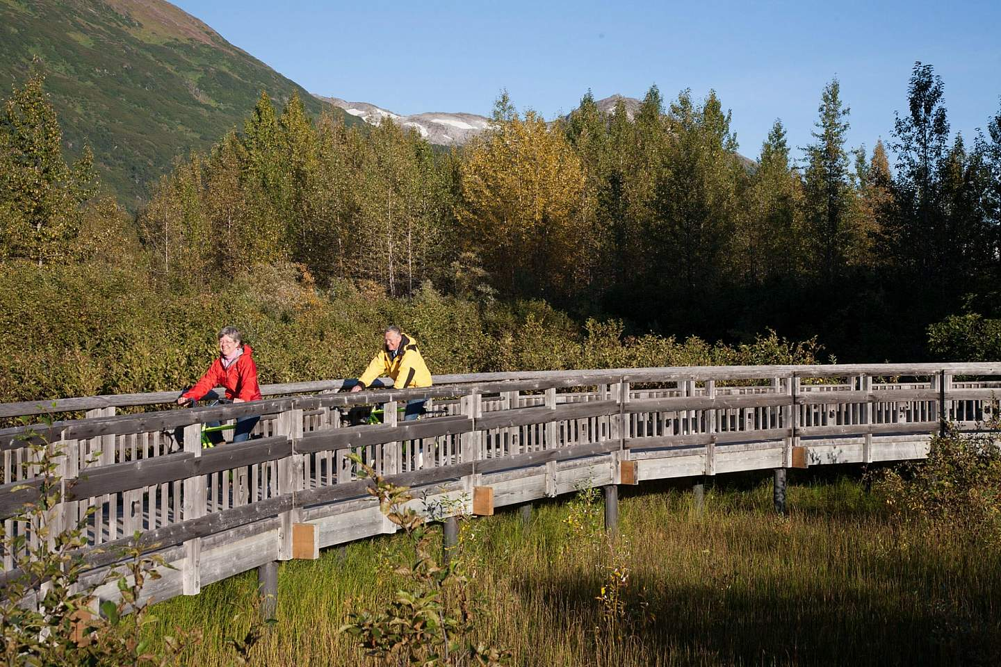 Bike the 5-mile Trail of Blue Ice through the Portage Valley, passing glacial lakes and ending at Portage Lake.