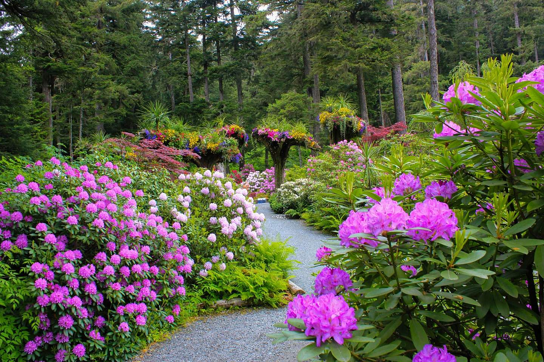 Glacier Gardens Rainforest Adventure 2017 6 June