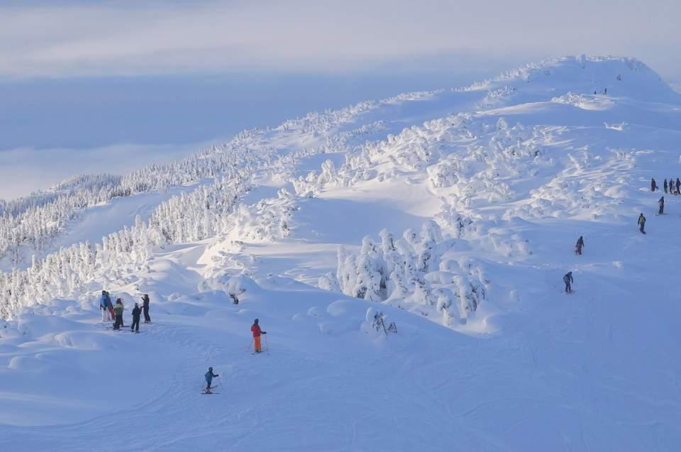 Eagle crest ski area DSC06607 Snow ghosts on Pittmans Ridge at Eaglecrest John Erben