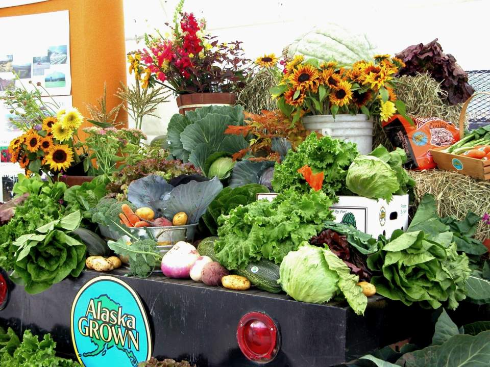 Be sure to check out the impressive agricultural exhibits at the Alaska State Fair
