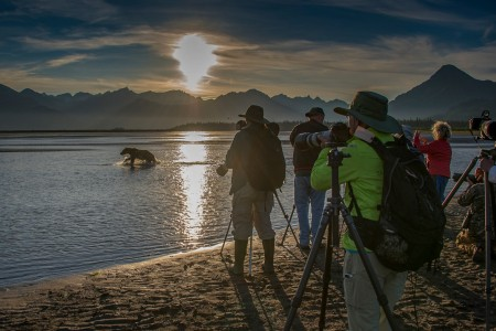 Alaska photo workshops tours alaska bearcamp photographers bear