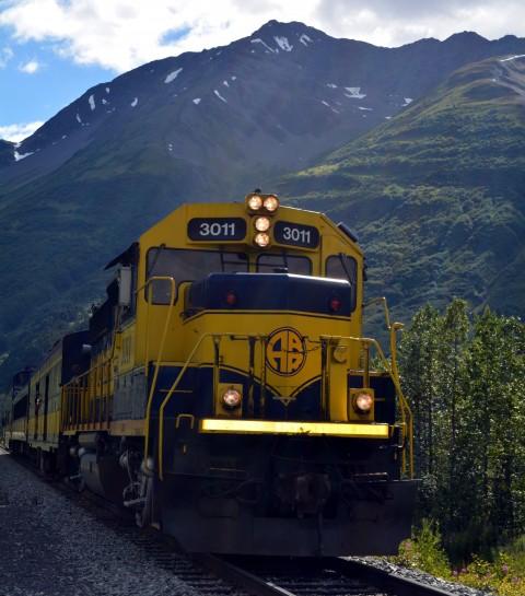 An Alaska Railroad Train at the Whistle Stop