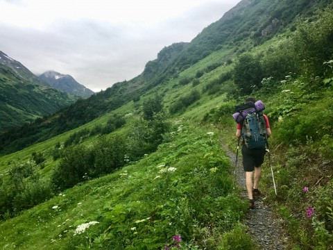 A hiker along the lush and green Berry Pass trail