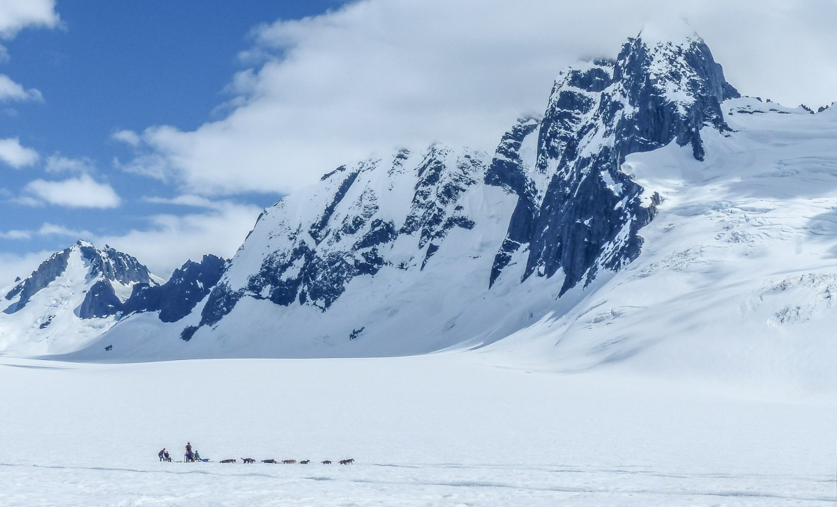 Kerry Howard The Mendenhall Towers loom large over tourists dog sledding on the Juneau Icefield