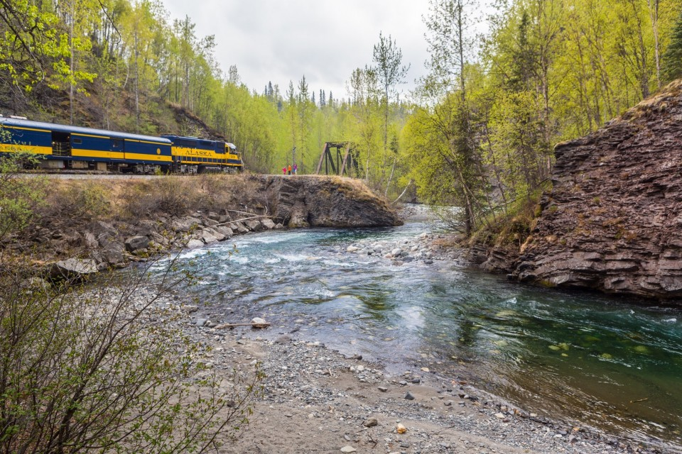 An Alaska Railroad train passes by a river in a forest setting.