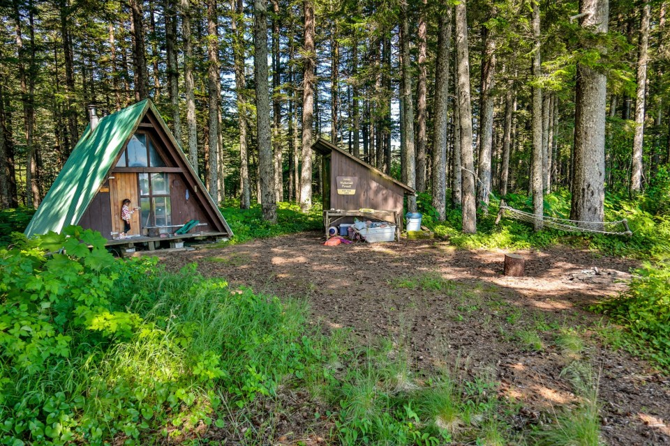 A small A-frame cabin in the woods.