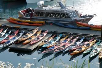 Kayaking kayaking valdez linda schneider