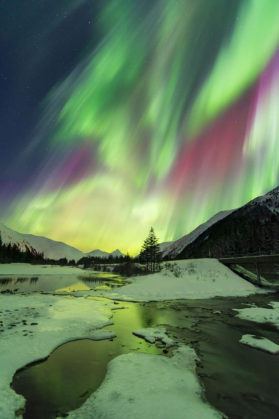 Carl Johnson northern lights Portage Valley 0313 CHNF AK 1231 Edit