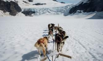 Anchorage winter activities