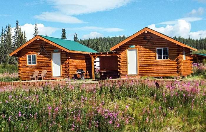 Chicken hotels lodges cabins