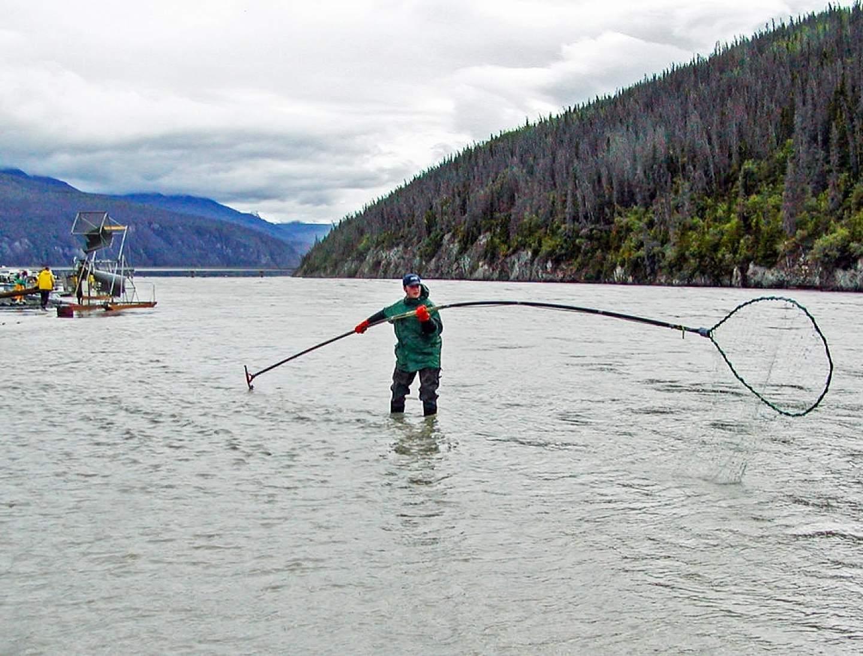 Subsistence fishing for Salmon in Chitina, Alaska