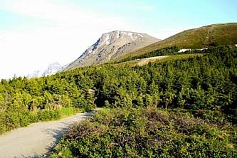 Chugach state park guided hiking Flattop1