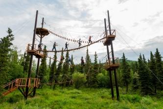 Denali national park zipline tours