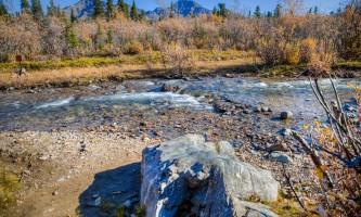 Denali national park rv parks campground igloo creek
