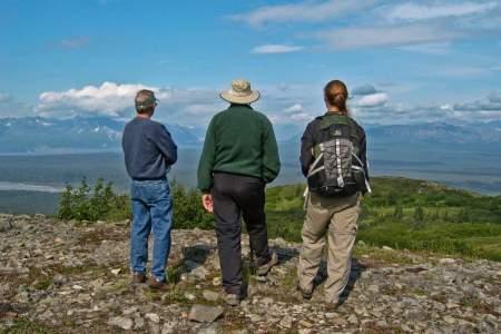 Denali national park guided hiking