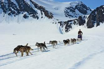 Girdwood glacier dog sledding Alaska Channel
