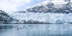 Things to do in glacier bay national parkglacier bay national park sarah fullilove Sarah Fullilove