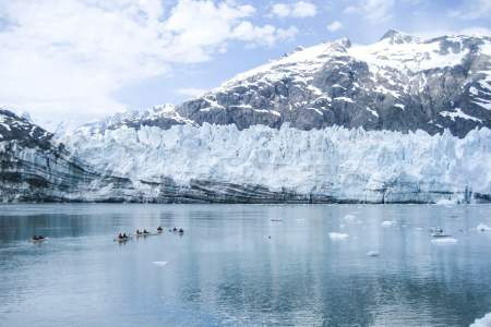 Glacier bay national parkglacier bay national park sarah fullilove Sarah Fullilove