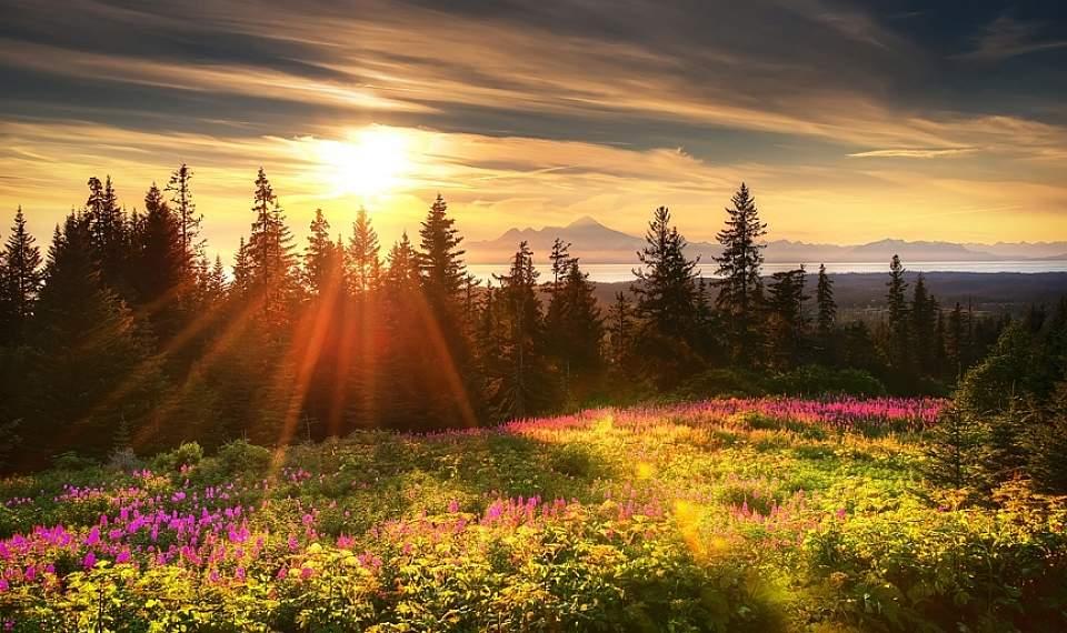 Golden Hour in Homer, Alaska