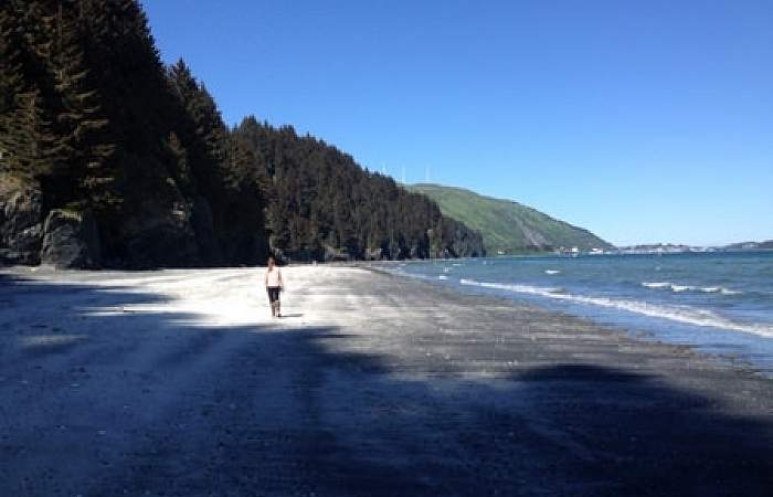 Kodiak rv parks campgrounds Buskin State Recreation Site Beach