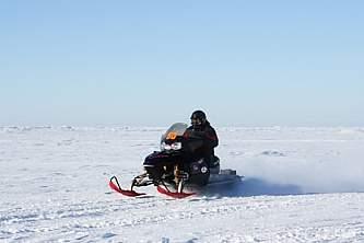 Nome winter activities nome winter activities katie oconnor Katie O Connor