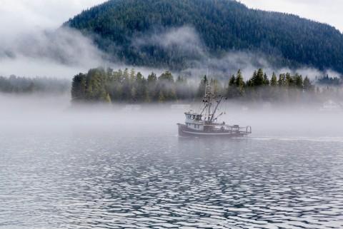 A fishing boat sails through foggy Mitkof Island.