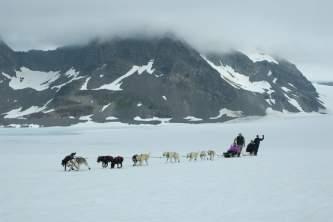 Seward dog sledding Alaska Channel