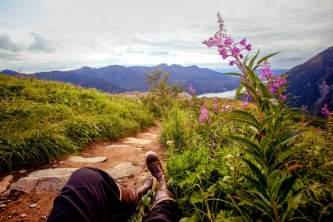 Alaska parks trails Jennifer Emerling 2 towntram timberline trek