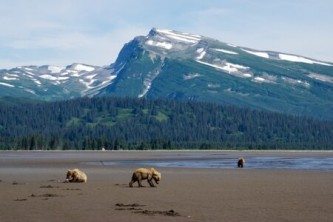 Lake Clark National Park2