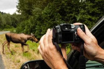 Get to know your camera Seward 053 o16445