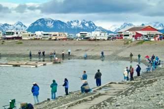 Where To Get Your Alaska Fishing License Homer June 04 023 o1643q
