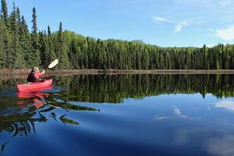Road accessible alaska public use cabins Rhein Lake scene Shawn Lyons rhein lake public use cabin