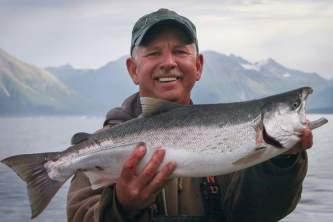 Alaska species fish silver salmon