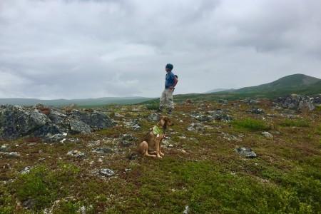 Exploring the Hills Above Landmark Gap Lake MP 24.5