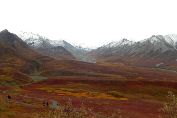 Alaska natural phenomena fall tundra foliage denali ryan ek ph4ghi