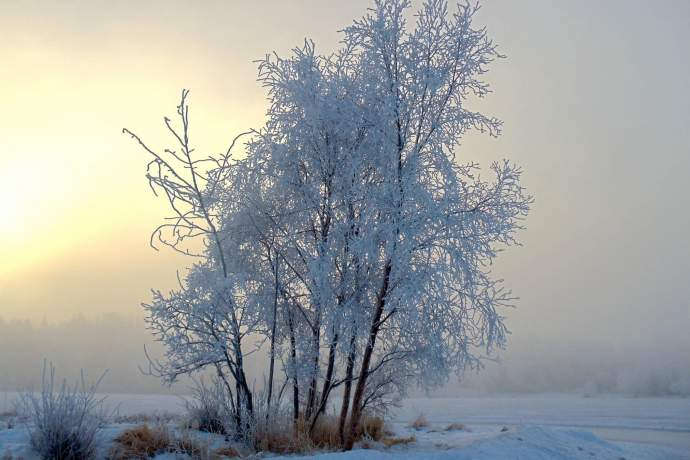 Alaska natural phenomena hoar frost west chester lagoon zen godfrey ph4ggs
