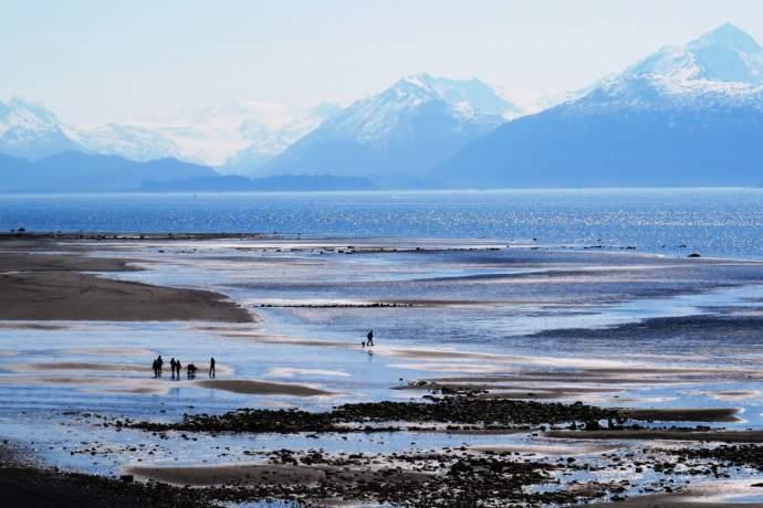 Best beaches bishops beach homer alaska pq0jm3