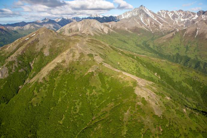Seasonal rhythm of alaska early summer lazy mountain trail pdkjgt