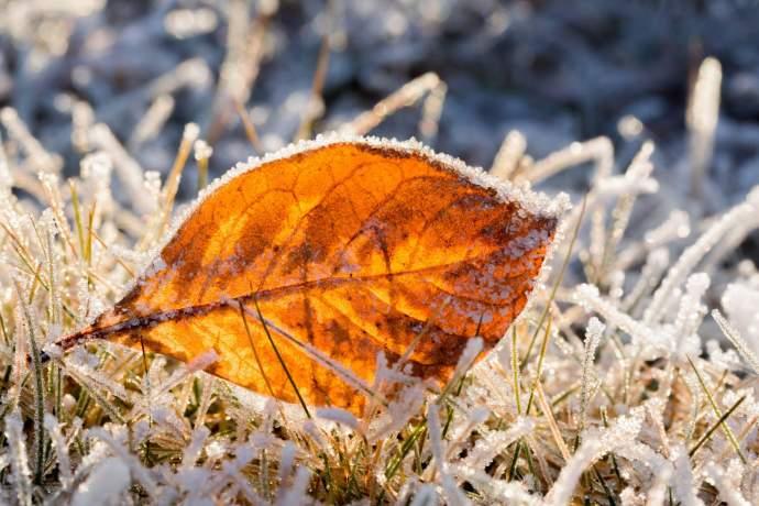 Seasonal rhythm of alaska early winter in alaska 4389 pdkji3