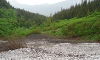 Victor-Creek-Trail-nhvyn2