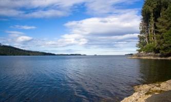 Whale-Park-Trail-nhvyox
